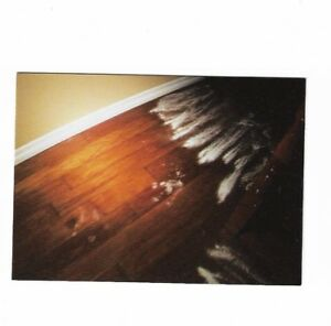 PARANORMAL ACTIVITY TRADING CARDS PORTENTS OF EVIL CHASE PUZZLE CARD PE4