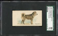 1890 N163 Dogs Of The World ESQUIMAUX SGC 86 NM+ **78-2544**