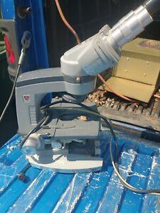 American Optical 1031 Microscope