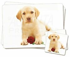 Yellow Labrador Puppy with Rose Twin 2x Placemats+2x Coasters Set in G, AD-L4RPC