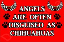 ANGELS ARE OFTEN DISGUISED AS CHIHUAHUA, Dog Novelty Fridge Magnet - Gift