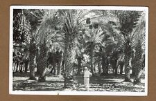 RPPC Indio,CA California Shield's Famous Date Gardens, Frasher Photo