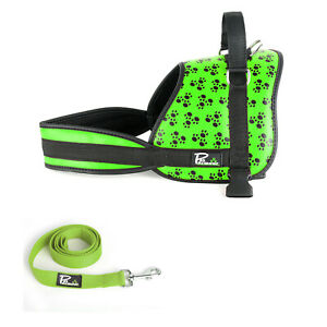 Dog Harness Adjustable Leather Strong Padded No Pull Vest Harness Lead Set Green