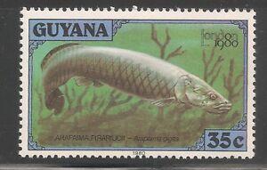 Guyana #317k (A73) VF MNH - 1980 35c Arapaima Fish / London '80 Stamp Expo