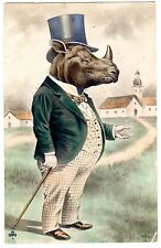 POSTCARD DRESSED RHINOCEROUS FANTASY ANIMAL
