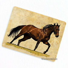 Horse #4 Deco Magnet, Decorative Gift Fridge Refrigerator Animal Illustration