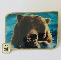 WWF World Wide Nature Fund Brown Bear 1996 Charity Pin Badge Rare Vintage (J9)