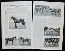 BETTISFIELD PARK HORSE STUD SIR EDWARD HANMER WREXHAM 2pp PHOTO ARTICLE 1932