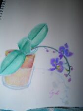 COLORED PENCIL drawing   original flowers orchid