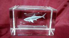 Vidrio de borde biselado 3D láser pisapapeles de bloque: tiburón