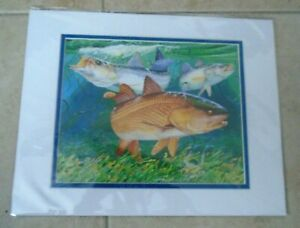 """Guy Harvey / REDFISH-SEATROUT   NEW Measures 11"""" X 14""""  INCH"""