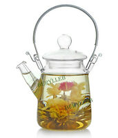 High Grade Handle Clear Glass Teapot w/t Lid 300ml 10.2fl.oz * Free Shipping
