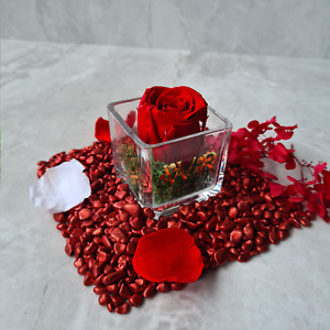 Infinity Rose in a Glass Vase, Eternal Rose with Preserved Moss, Forever Rose