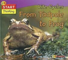 Life Cycles from Tadpole to Frog (Start Thinking)-ExLibrary