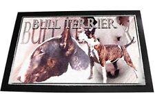 Designer Fußmatte Englischer Bullterrier 1 Bull Terrier 80x60 cm Fussabtreter