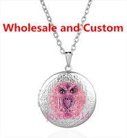 Jewellery OWL Photo Cabochon silver Glass Locket Pendant Necklace HZ-4421
