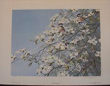 "John Seerey-Lester ""Spring Mist-Chickadees"" S/N Ltd Ed Print RARE! #80/950"