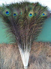 perfect 20-100 PCS peacock feathers eye 28-32 inches / 75-80 cm Choose