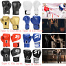 Children Adults Sparring Grappling Boxing Gloves Muay Thai MMA Fighting Punching