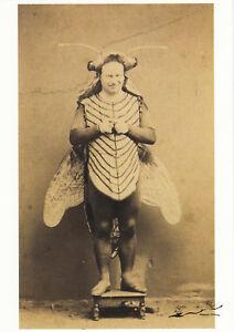 Karte:Der Schauspieler Desirè als Jupiter, der sich in eine Fliege verwandelt ha