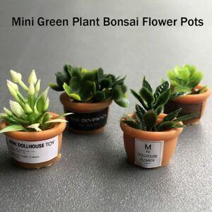 Bonsai Flower Pots 1:12 Accessories Mini Green Plant Dollhouse Furniture