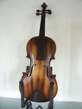 Herrliche Antonius Stradivarius