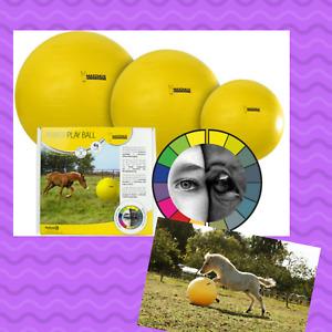 Maximus Power Ball Spielball Pferd GELB verschiedene Größen Pferdespielball