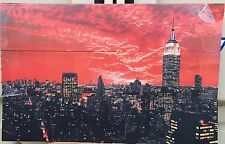 """New York Try Pitch   33"""" x 7"""" Canvas on a wooden frame slightly damaged"""
