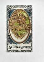 2017 Topps Allen and Ginter Mini Black Border #52 Trees in India - NM-MT