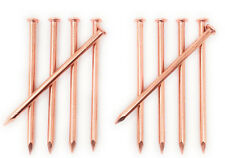 4 Inch Copper Nails for Killing Trees, Stumps & Roots - 10 Count