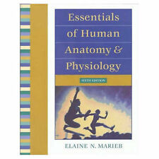 USED (GD) Essentials of Human Anatomy and Physiology (6th Edition) by Elaine Nic