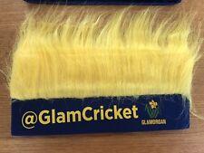 Glamorgan Cricket vitalidad T20 Blast Oficial Novedad Diadema