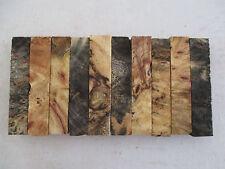 "Buckeye Burl Pen Blanks 3/4 x 3/4 x 4"" - 10 pieces-  Exotic Wood - 1042"