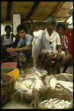 595017 Fishermen At The Market Cochin A4 Photo Print