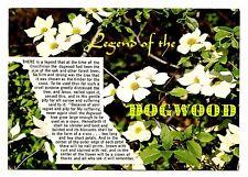 Dogwood Flowers Postcard British Columbia Canada Blossoms Legend Floral Emblem