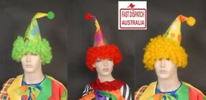 Spotty Cone Clown Hat with Orange, Red or Yellow Afro Wig Attached Fancy dress