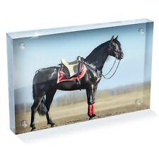 "Black Spanish Horse Photo Block 6 x 4"" - Desk Art Office Gift #12495"