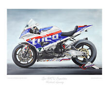 Tyco BMW Superbike - Michael Laverty - Limited Edition Art Print by Steve Dunn