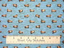 Ducks Swimming Animals Water Nature Blue Cotton Novelty Springs Fabric YARD