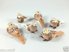6 New Pottery Barn Mini Feathered Bird Vase Filler Easter Table Decor Floral