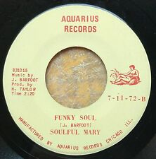 """LOW-FI FUNK BLUES 45: SOULFUL MARY (Luther """"Guitar Jr"""" Johnson instrumental)"""