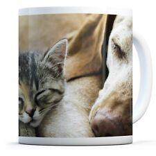 Cute Dog & Kitten - Drinks Mug Cup Kitchen Birthday Office Fun Gift #8713