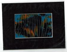 Humor Wunderschöner Handgemalter Taschenkalender 1946 Kunst Blumen Malerei Deko Art Drawings