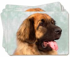More details for blonde leonberger dog picture placemats in gift box, ad-le1p