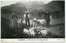 MéTIER.éLEVAGE DE CHIENS DE MONTAGNE.LOURDES.breeding dogs MOUNTAIN.TRADE