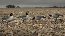 Avery GHG Hunter Series Canada Goose Harvester Pack Lesser Goose Decoys New!