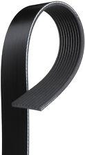 Serpentine Belt-Premium OE Micro-V Belt fits 00-02 International 9900i 14.0L-L6