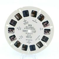 View-Master Reel # 913 Wild Animals of North America in Captivity USA viewmaster