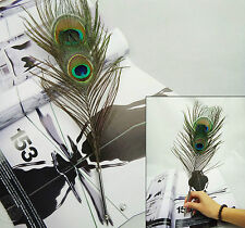 Double Eye Peacock Feather Guest Book  Quill  Pen Wedding Party Wonderful Gift