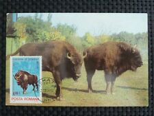 ROMANIA MK BISON WISENT MAXIMUMKARTE CARTE MAXIMUM CARD MC CM c1009